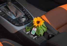 Come avere un'auto completamente disinfettata? Per eliminare germi e batteri basta un solo prodotto.