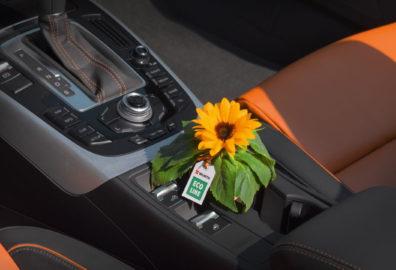Disinfetta completamente le auto dei tuoi clienti: per eliminare germi e batteri basta un solo prodotto!