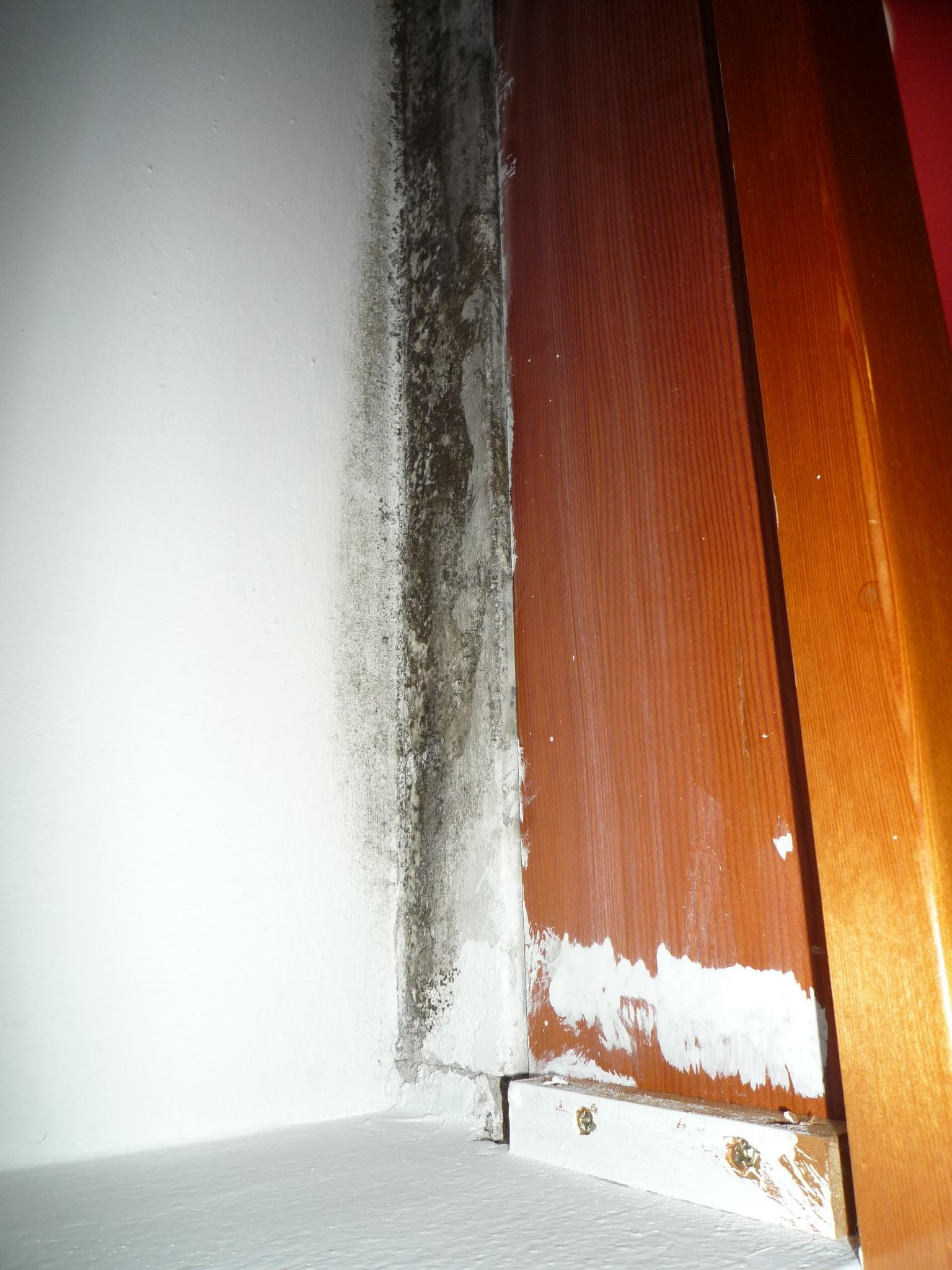 Muffa in corrispondenza del raccordo serramento-parete