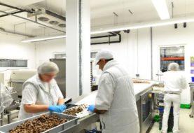 Rapidi, efficaci e sicuri: scopri gli igienizzanti e sanificanti per industria alimentare