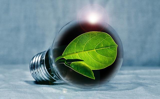 Domotica ed efficienza energetica