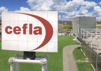 Gestione ottimizzata e consumi più consapevoli (e sotto controllo): ecco perché CEFLA ha scelto i distributori automatici di DPI
