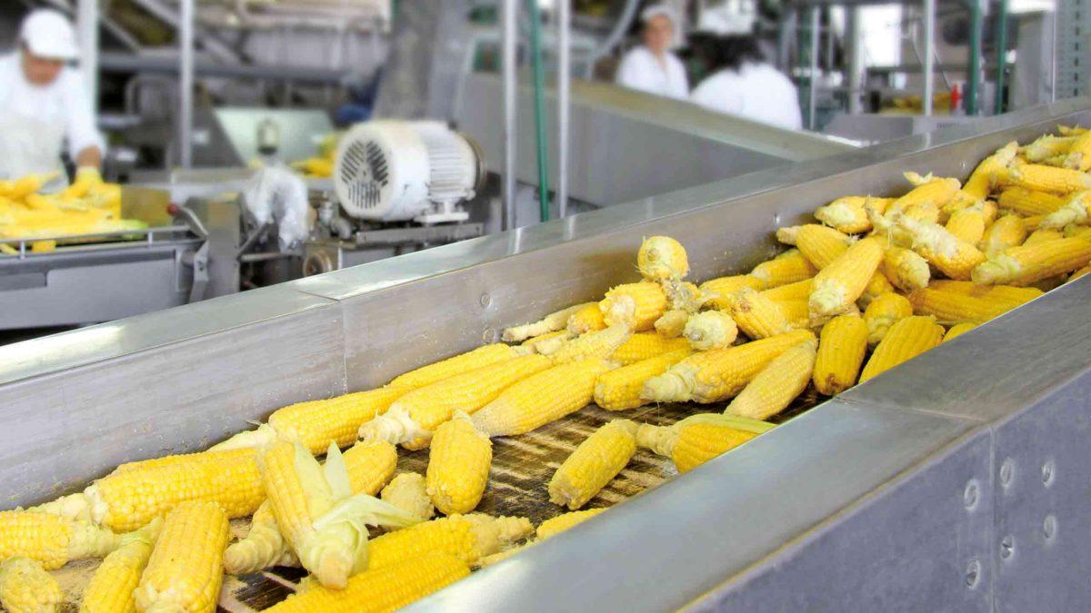 prodotti chimici per l'industria alimentare