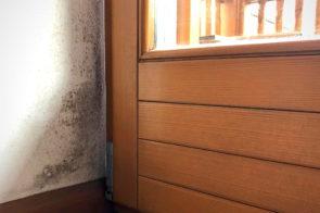 Muffa vicino agli infissi: scopri come evitarla grazie a una posa del serramento a regola d'arte!