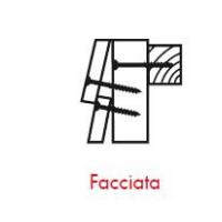 Pittogrammi ASSY 4 - Applicazioni nelle costruzioni FACCIATA