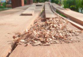 Costruzioni in legno: aumenta la richiesta in Italia di edifici multipiano in legno
