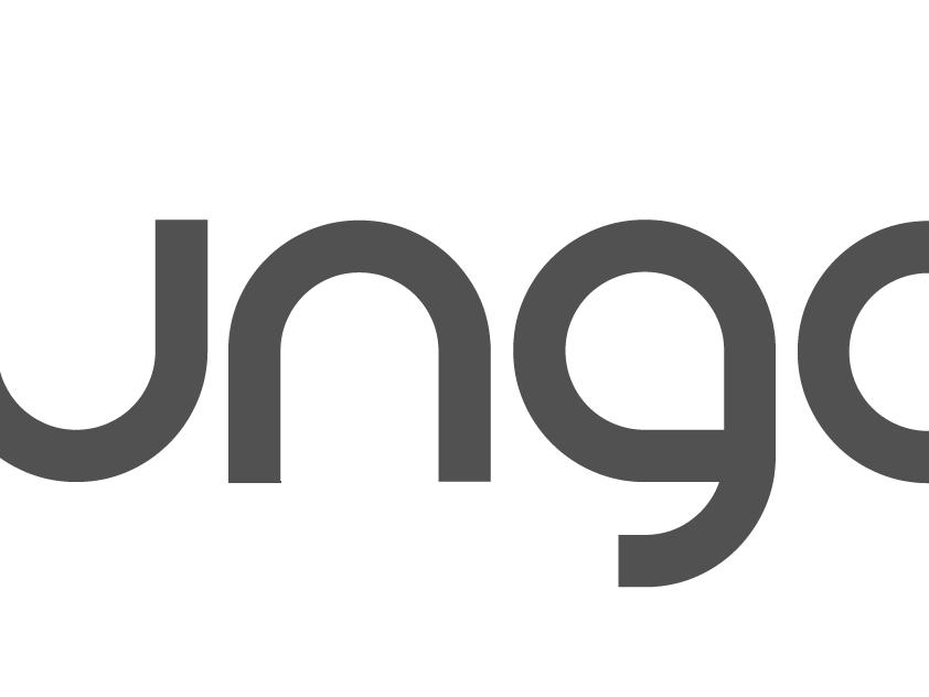 IUNGO: piattaforma di Supply Chain Collaboration e B2B Marketplace